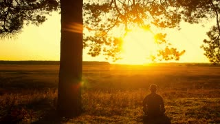 Human sitting under tree. Man repose on grass in nature. Outdoors - outside. Young man meditating in half lotus - beautiful sunset as a background.