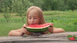 Little girl eats watermelon. Portrait of child eats watermelon slices.