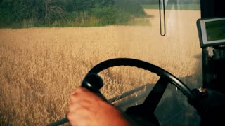 Man driving a combine and harvesting the wheat.