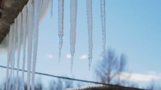 Many beautiful icicles melt on the roof at the end of winter and water drops are fall down. Spring is comming concept.