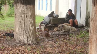 Mature homeless woman with a dogs sits on the steps of the building.