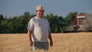 Middle age farmer looking at camera, combine harvesting wheat plants in the golden wheat field.