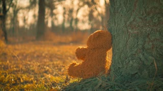 Nature beauty theme image with a teddy bear toy sitting, alone, on an old wooden bench, watching the sun rays, over a forest.