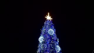 New Year's mood - Christmas tree blinking with different lights at night