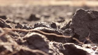 Ploughed field, soil close up. background.