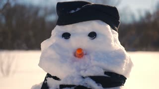 Portrait of a snowman in winter on a sunny day
