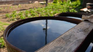 Recovery of rainwater in a garden.