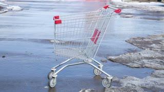 shopping cart at parking