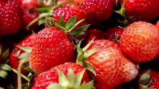 Strawberries on red background. Group of fresh and large strawberries.