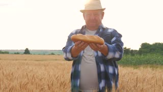 Successful farmer in field of wheat. An adult male demonstrates a product made of wheat, bread. Harvest time.