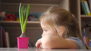 Sweet teenager girl looks at the growing flower in the pot, I think about the future. The concept of growing up.