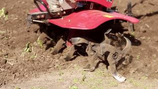 The garden tiller to work close up, walk-behind tractor