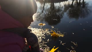 The girl throws an autumn leaf in the lake. Clouds are reflected in a puddle. The water falls bright autumn leaf. Filmed at a speed of 120fps