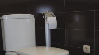 Toilet bowl in the toilet. Toilet seat decoration in bathroom interior.