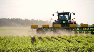 Tractor is protecting wheat with herbicide spraying, Plant protection spraying herbicides.