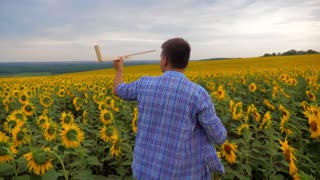 Young caucasian man playing with wooden airplane in sunflower field on sunset. Slow motion.