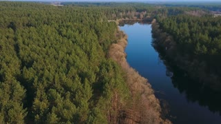 Beautiful aerial view of sring forest and river. Eye bird view on summer nature, green pine forest and meandering river.
