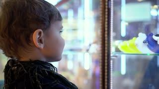 Children choose a toy in a shop window