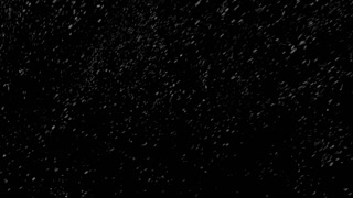 Animation of snow falling. Production quality Footage in ProRes 4444 codec with alpha channel, 25 Fps