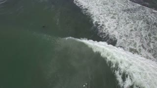 Aerial of Surfing From Above in Elands Bay