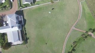 Flying Over Kite Flying in green Field