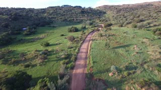 Following Windy Road in Green Country Side at Sunset Aerial Shot