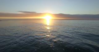 Seagull Flying over Ocean at Sunrise Aerial Shot