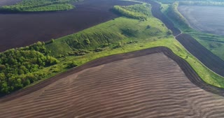 Aerial flight over grey field and forest