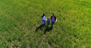Aerial view of young family with small on walking on green field