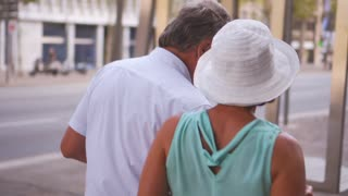 Charming senior couple walking at street