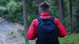 Following hiker in forest