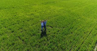 Happy family waving on green field, aerial flight