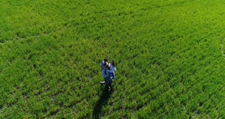 Merry family spending time together on green field, aerial view