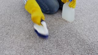Person cleaning carpet with brush and spray