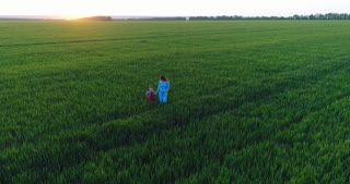 Summer walk of young family on green field, aerial view