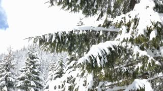 Panning from left to right on beautiful winter landscape in mountains