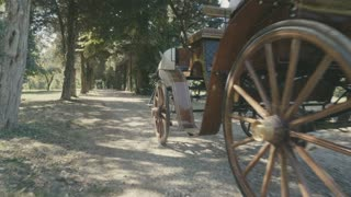 Retro vintage carriage drawn by a horse in the forest