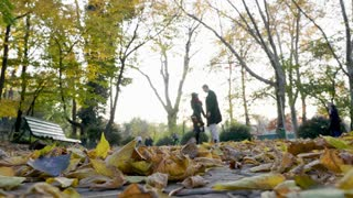 SLOW MOTION LOW ANGLE. Beautiful young couple in atumn park walking together and holding hands. Romance and friendship