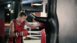 Boxer hitting the dummy in the gym