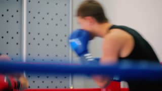 Boxer makes a knockout in the red gloves