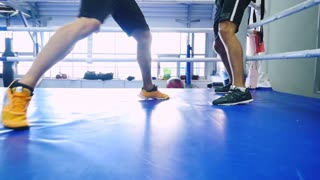 Legs move boxers in the ring