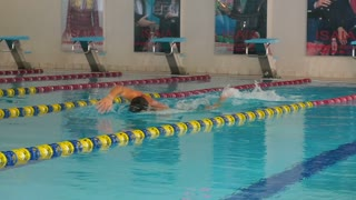 The swimmer swimming breaststroke in the swimming pool