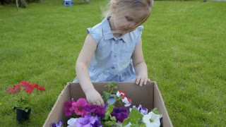 Adorable child take out flowers from cardbox