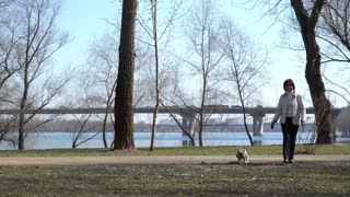 Adult woman walks in spring park with yorkshire terrier