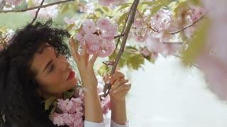 Beautiful woman touch sakura flowers