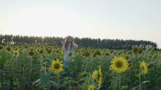 Cute little girl throws a paper airplane in sunflowers field