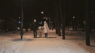 Cute young family is walking in a winter evening park
