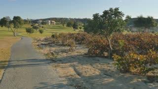 Driving golf cart and beautiful nature around