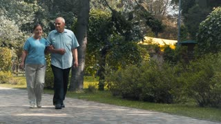 Elderly couple walks in park