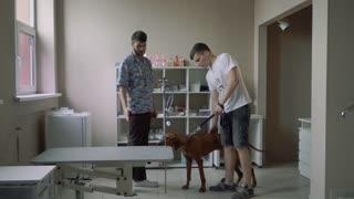 Guy with a dog at a veterinarian at a survey